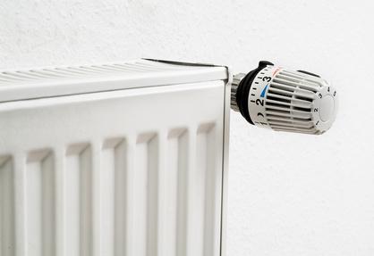 Calefactor Pan Renove